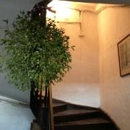 l'escaliers